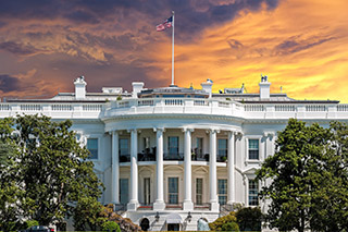Investment Update: Election Year Market Impact